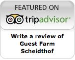 Review on Tripadvisor