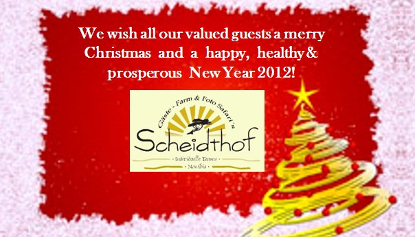 Merry Christmas and a happy New Year 2012